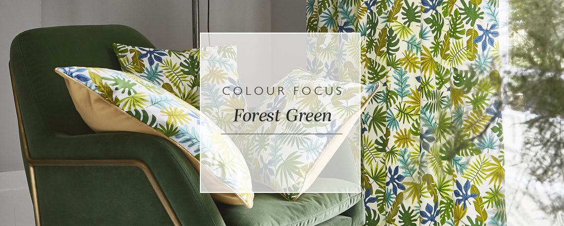 Colour focus: forest green